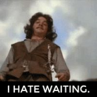 Inigo Montoya - I hate waiting